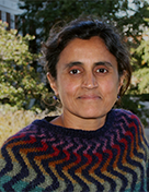 Sangeetha Madhavan, Ph.D.