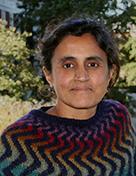 Madhavan leads team to study kinship effects
